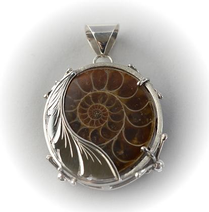 Ammonite cascada
