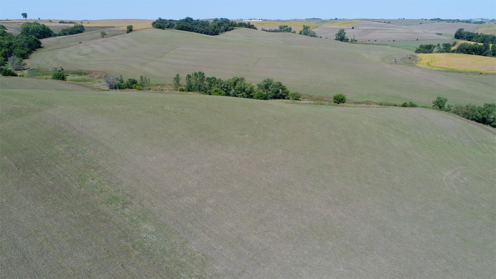 Ullrich 100 acres 3
