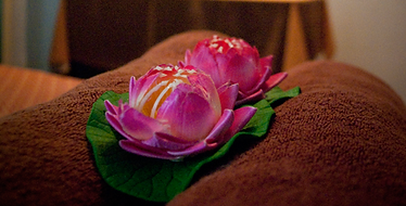 Wollongong Flower Massge