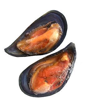 Мидии, гребешки, моллюски