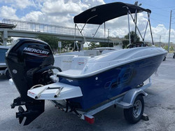 2020 BAYLINER E16 ELEMENT 8