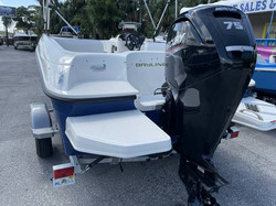 2020 BAYLINER E16 ELEMENT 5