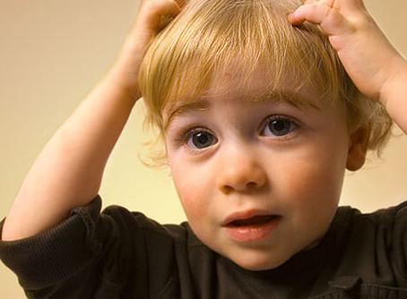 I found lice on my child. What do I do now?