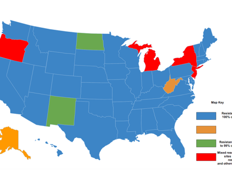 Lice in 42 States Are Resistant to OVER THE COUNTER-Superlice