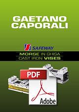 COP PDF MORSE.jpg