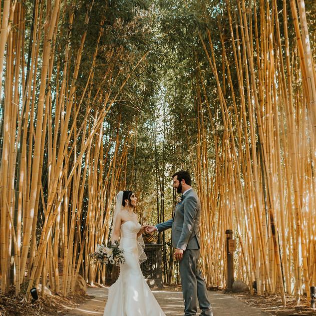 SanDiego_Zoo_SafariPark_Wedding.jpeg