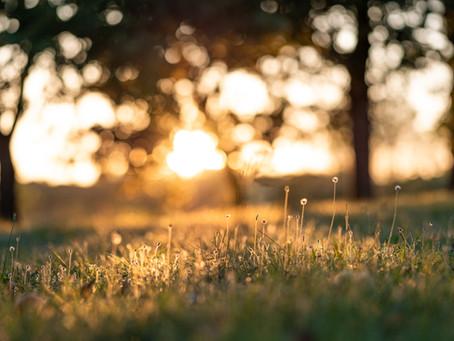 Slow life: cómo la lentitud puede hacerte más feliz