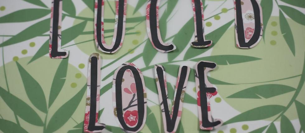 Lucid Love - Stop Motion Film