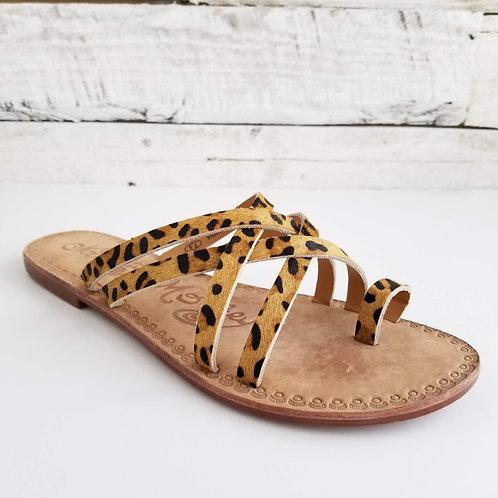 *NM Zooche Leopard Sandals