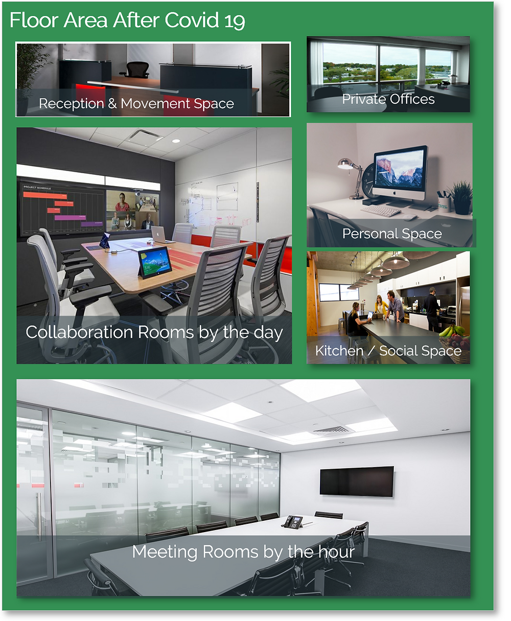Another image of office space,  this time dominated by meeting and collaboration rooms.