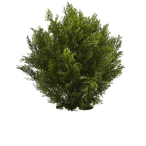 greens-nearly-natural-artificial-plants-