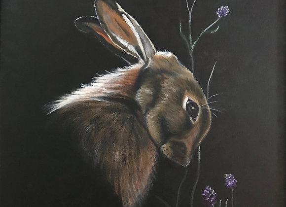 Honeysuckle Bunny