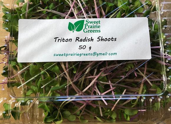 Triton Radish Shoots