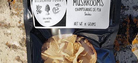 Pine Mushrooms (Matsutake)
