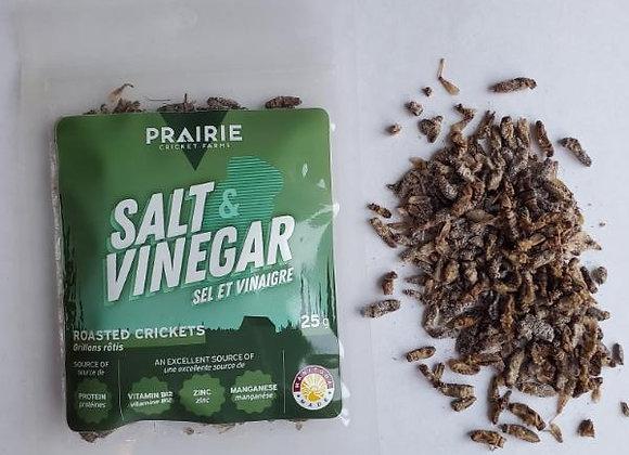 Salt & Vinegar Roasted Crickets