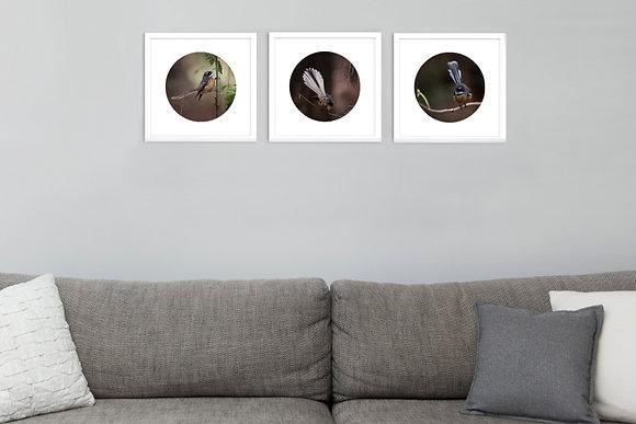 Set of Three - Fine Art Prints