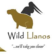 Wild Llanos logo
