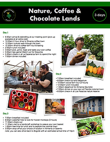 Nature, Coffee & Chocolate Lands.png