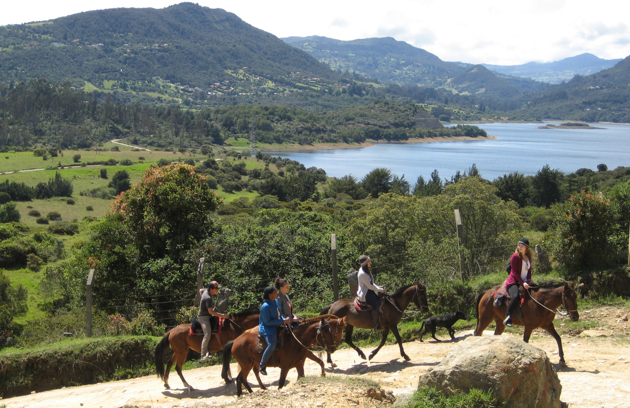 HorsebackBogota