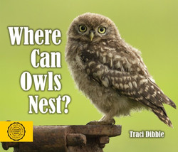 Where Can Owls Nest?