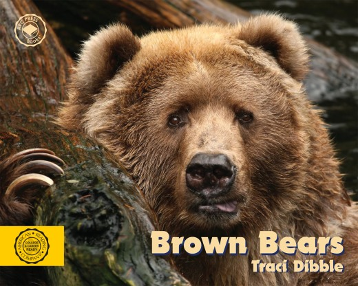 The Brown Bear