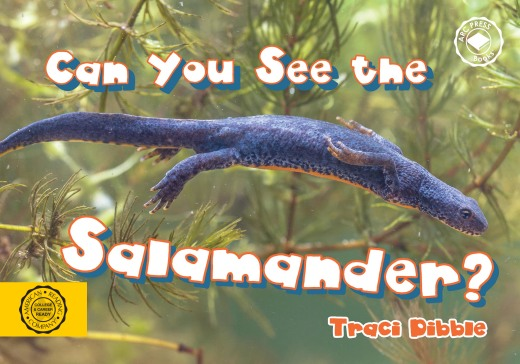 Can you see the salamander?