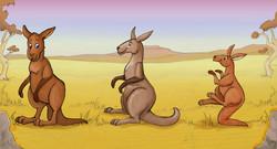 kangaroo-color1