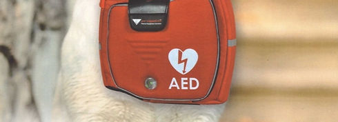 Defibrillatore-_edited.jpg