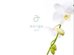 Capella Hotels 10 Auriga Spas