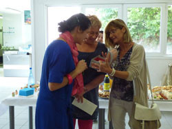 Icône - Pôt d'adieu à Emmanuelle BOYER -