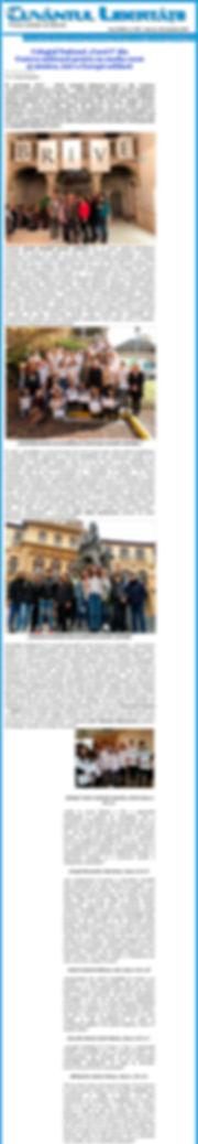 Article  de la Roumanie - Journaux locau