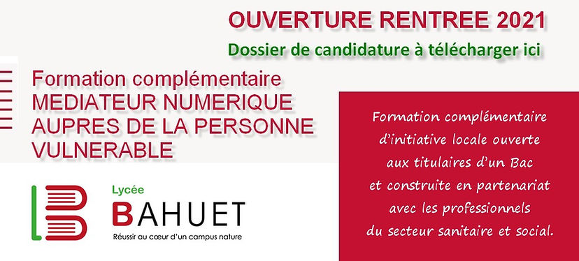 Licence FCIL MNPV Lycée Bahuet.jpg