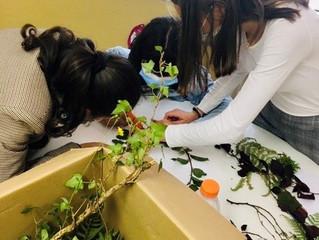 Semaine du développement durable - Les élèves de seconde animation