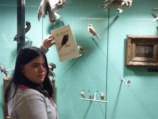 Un atelier créatif avec Solène JOLIVET au Musée LABENCHE pour les élèves de la classe ULIS