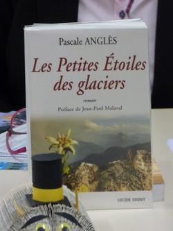 Les_petites_étoiles_des_glaciers_et_la_classe_ULIS_-_Photo_7