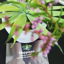 Happizen_logo