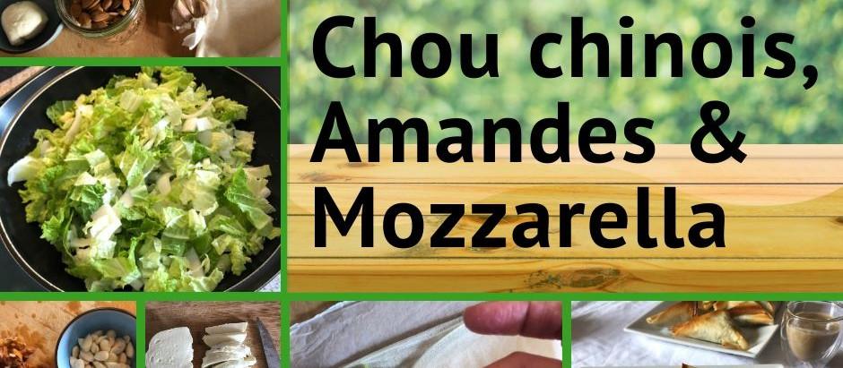 Samoussa au chou chinois, amandes et mozzarella