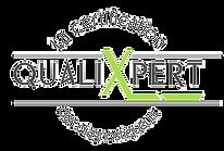 Logo%20qualixpert%20leger_edited.png