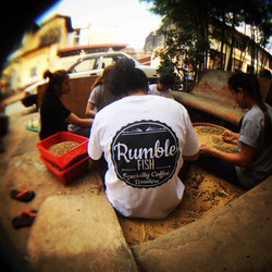 the Rumble Fish team