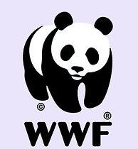 papir tatovering panda WWF