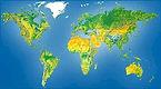 planisphere_rel.jpg
