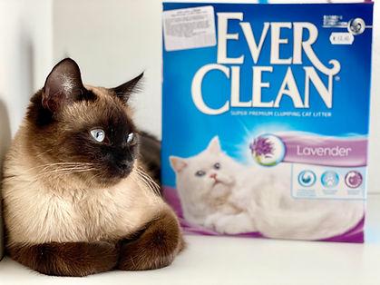Ever clean.jpg