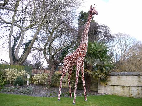 Dutch Imports Giraffe Large