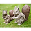 Thumbnail: Dutch Imports Squirrel - Wood Effect