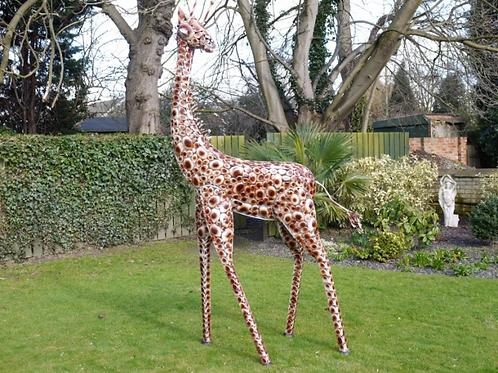 Dutch Imports Giraffe Medium