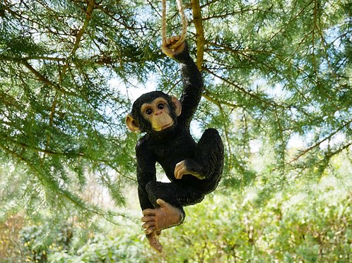 Dutch Imports Monkey Hanging By One Hand