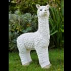 Dutch Imports Llama (White)
