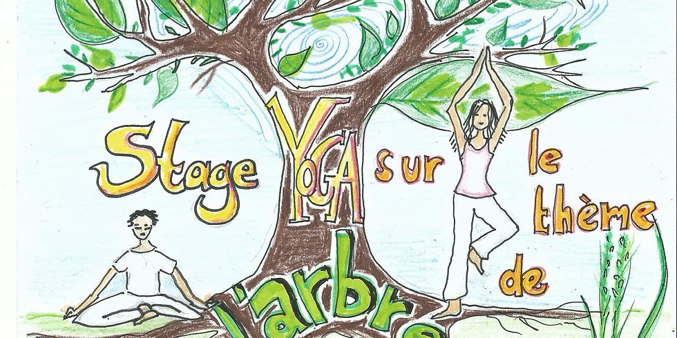 Stage de Yoga autour du thème de l'arbre