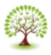Formation Synergie Naturopathie par correspondance Occitanie sud