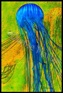 jellyfishcolorssig